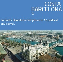 Costa Barcelona cat red