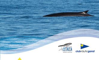 Presentació Projecte Albirament Cetacis 'Amics del Mar' en el CN Garraf